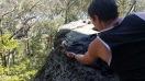 Nowra and the tame Kookaburra